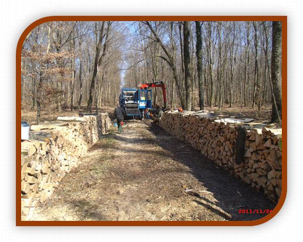 Billot De Bois De Chauffage : Billot – Bois vous accueille sur son nouveau site internet – Les